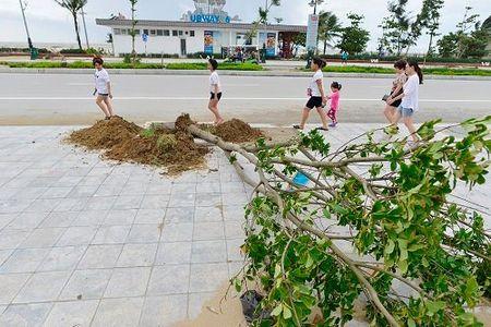 Bao so 2 qua Thanh Hoa: Cay xanh bat goc, nha hang do sap - Anh 5