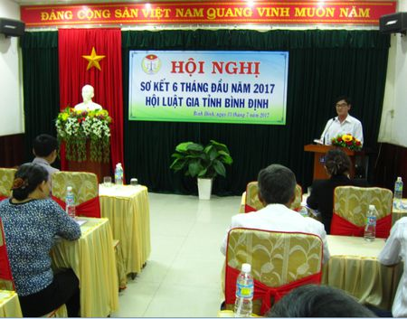 Cac cap Hoi Luat gia Binh Dinh to chuc nhieu buoi tuyen truyen phap luat - Anh 1