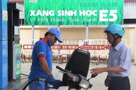 Xang E5 duoc lua chon de 'khai tu' RON 92 - Anh 1