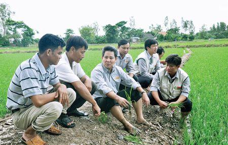 Cang mo rong, Loc Troi cang duoi kinh doanh - Anh 2