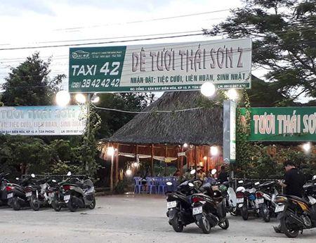 'Xe thit' dat san bay Bien Hoa - Anh 3
