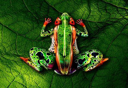 Nhung tac pham body-painting 'dinh cao' khien ban cang mat phan biet - Anh 8