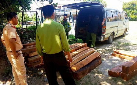 Gia Lai: Khong bang lai, cho go lau tren xe het nien han - Anh 1