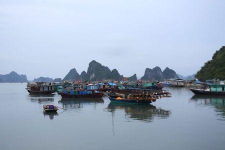 'Lac buoc' vao cang bien dep bac nhat Vinh Bac Bo - Anh 1