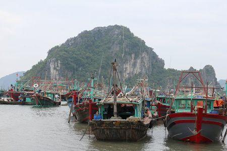 'Lac buoc' vao cang bien dep bac nhat Vinh Bac Bo - Anh 2