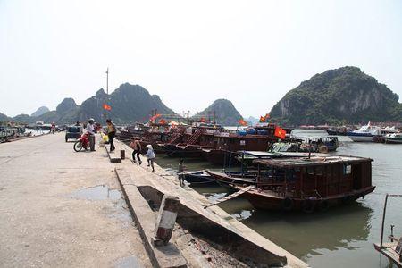 'Lac buoc' vao cang bien dep bac nhat Vinh Bac Bo - Anh 4