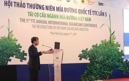 Mia duong Viet Nam tut hau xa: Dau la nguyen nhan? - Anh 1