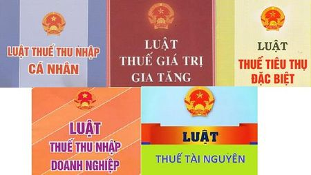 Du an Luat sua 5 Luat Thue: Cai cach he thong thue phu hop thong le quoc te - Anh 1