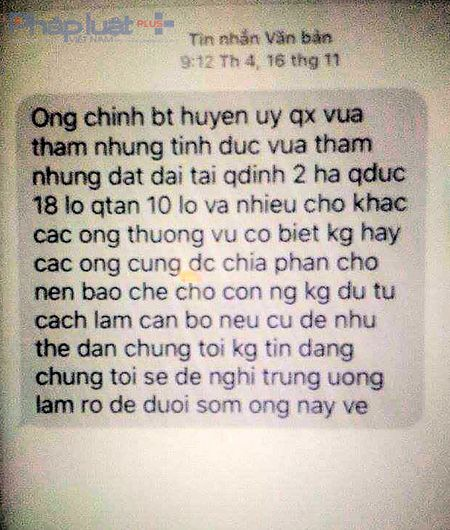 Thanh Hoa: Tuyen phat 27 thang tu giam vu boi nho Bi thu huyen 'tham nhung tinh duc' - Anh 2
