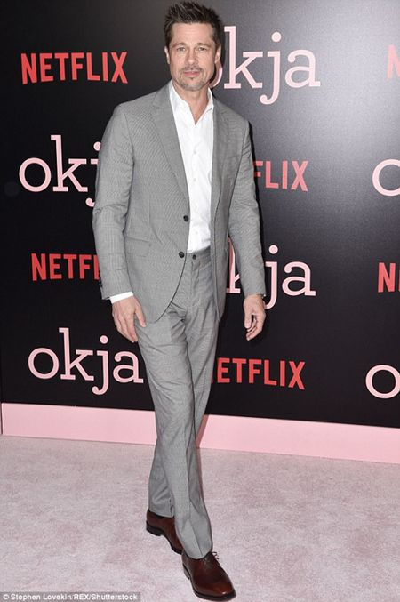 Shania Twain viet ca khuc lay cam hung tu anh khoa than Brad Pitt - Anh 2
