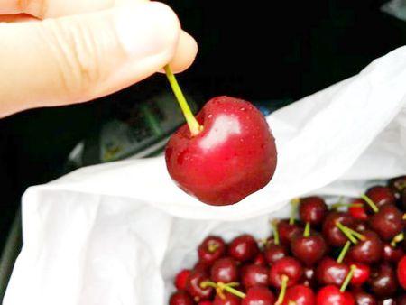 Cherry Uc chinh thuc duoc vao Viet Nam - Anh 1