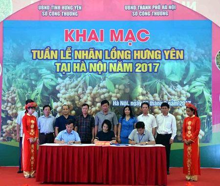 Khai mac Tuan le Nhan long Hung Yen tai Ha Noi nam 2017 - Anh 2