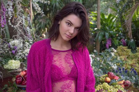 Kendall Jenner quyen ru, me hoac trong bo suu tap moi cua La Perla - Anh 7