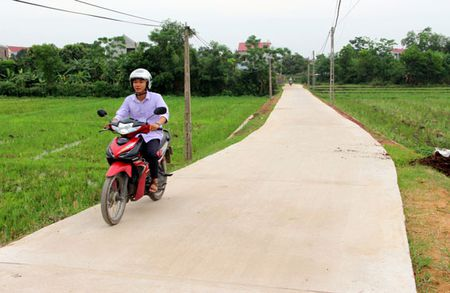 Thai Nguyen: Hoan thanh viec phan bo xi mang ho tro xay dung nong thon moi - Anh 1