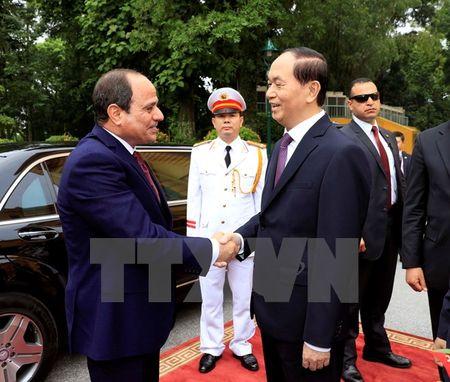 Tong thong Ai Cap ket thuc chuyen tham cap Nha nuoc toi Viet Nam - Anh 1