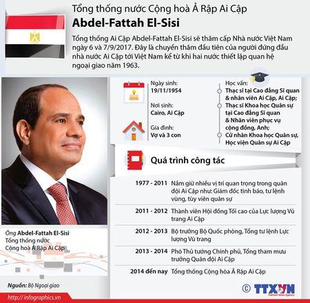 Tong thong Ai Cap ket thuc chuyen tham cap Nha nuoc toi Viet Nam - Anh 2