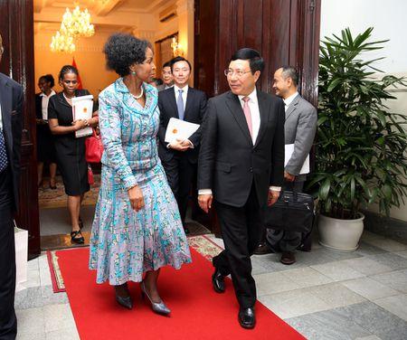 Viet Nam - Nam Phi huong toi muc tieu thuong mai 2 ty USD - Anh 2