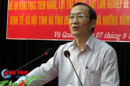 Den 2025, dua gia tri san pham, dich vu tren dat lam nghiep len 7.500 ty - Anh 1