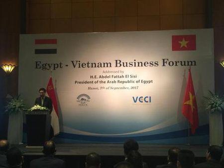 Co hoi nang cao hop tac Viet Nam – Ai Cap - Anh 1