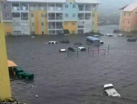 Bao Irma do bo: Puerto Rico va quan dao Virgin hoan toan bi pha huy - Anh 6
