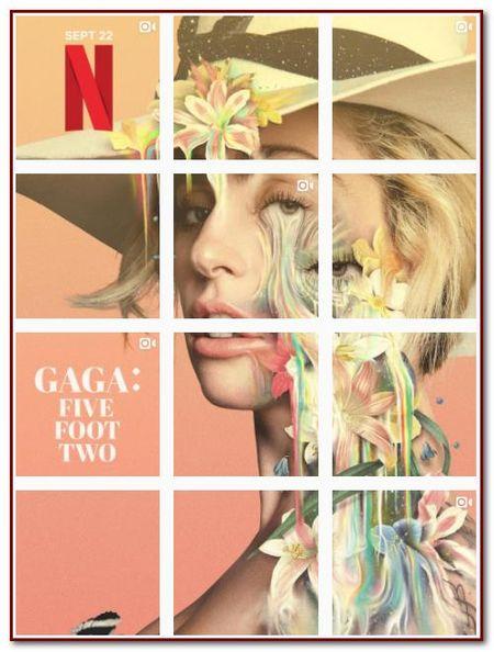 Soc truoc hinh anh nhap vien, bi bat giu cua Lady Gaga - Anh 3