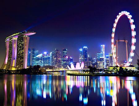 Singapore: Giac mo hoa rong thanh hien thuc sau 200 nam - Anh 10