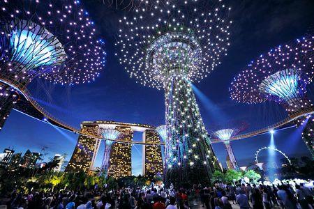 Singapore: Giac mo hoa rong thanh hien thuc sau 200 nam - Anh 11