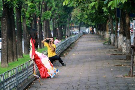Hang cay co thu tren duong Kim Ma truoc ngay di doi - Anh 10