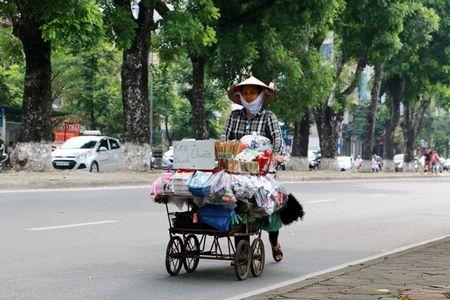 Hang cay co thu tren duong Kim Ma truoc ngay di doi - Anh 8