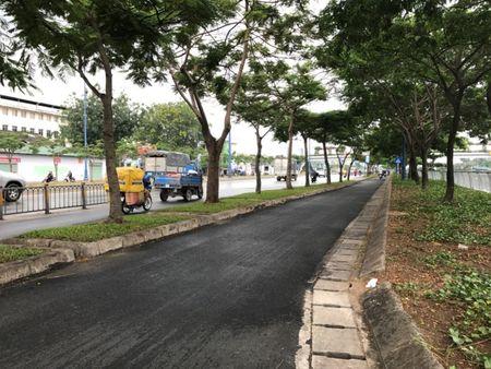 Vi sao TPHCM dung du an buyt nhanh BRT tri gia gan 144 trieu USD? - Anh 11