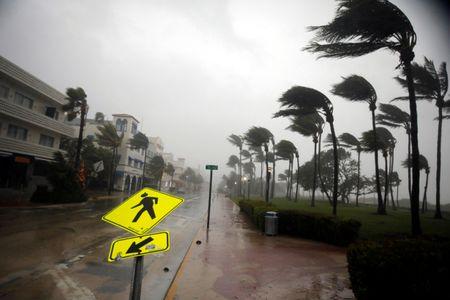 Hinh anh bao Irma khien Florida nhu o 'vung toi mat trang' - Anh 1