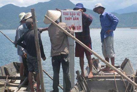 Thua Thien Hue: Tang cuong xay dung, tai tao cac khu bao ve thuy san - Anh 1