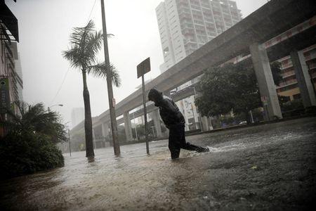 Bao Irma hoanh hanh dien rong o Florida - Anh 1