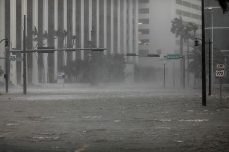 Bao Irma hoanh hanh dien rong o Florida - Anh 5