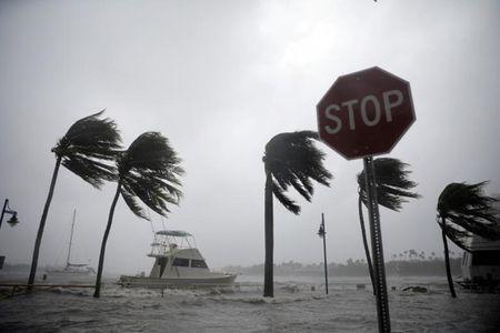 Sieu bao Irma nhan chim du lich Floria trong bien nuoc - Anh 1