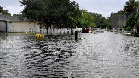 Nhung hinh anh to cao 'toi ac' bao 'quai vat' Irma gay ra o Florida - Anh 11