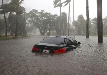 Nhung hinh anh to cao 'toi ac' bao 'quai vat' Irma gay ra o Florida - Anh 12