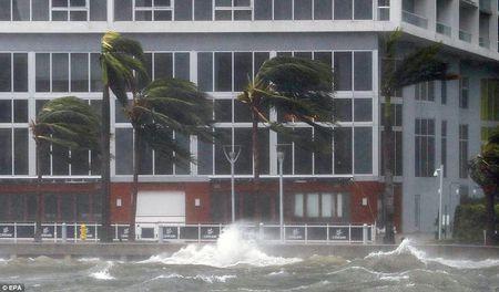 Nhung hinh anh to cao 'toi ac' bao 'quai vat' Irma gay ra o Florida - Anh 13