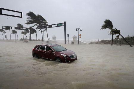 Nhung hinh anh to cao 'toi ac' bao 'quai vat' Irma gay ra o Florida - Anh 16