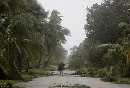 Nhung hinh anh to cao 'toi ac' bao 'quai vat' Irma gay ra o Florida - Anh 19
