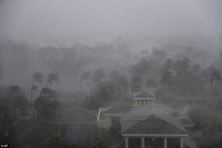 Nhung hinh anh to cao 'toi ac' bao 'quai vat' Irma gay ra o Florida - Anh 1