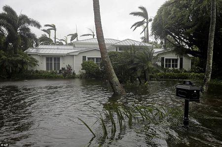 Nhung hinh anh to cao 'toi ac' bao 'quai vat' Irma gay ra o Florida - Anh 20