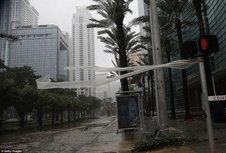 Nhung hinh anh to cao 'toi ac' bao 'quai vat' Irma gay ra o Florida - Anh 21