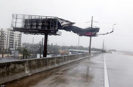 Nhung hinh anh to cao 'toi ac' bao 'quai vat' Irma gay ra o Florida - Anh 3