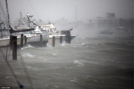 Nhung hinh anh to cao 'toi ac' bao 'quai vat' Irma gay ra o Florida - Anh 5