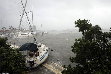 Nhung hinh anh to cao 'toi ac' bao 'quai vat' Irma gay ra o Florida - Anh 6