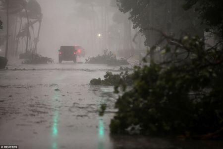 Nhung hinh anh to cao 'toi ac' bao 'quai vat' Irma gay ra o Florida - Anh 7