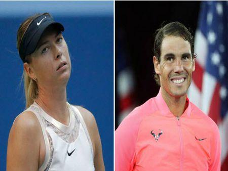 Sharapova tu truyen: Viet soc ve Serena, nhu bi gai bay doping - Anh 4