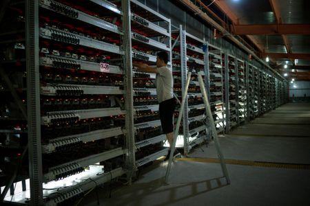 Nhung hinh anh cua 'nha may' bitcoin lon hang dau the gioi tai Trung Quoc - Anh 2