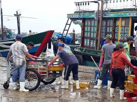 Mien Trung hoi ha ra khoi nha chong Bao so 10 - Anh 11